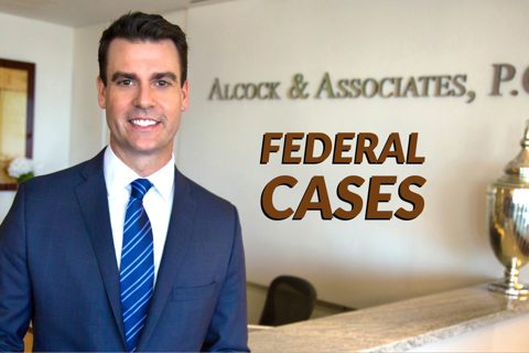 Federal Cases - Alcock and Associates