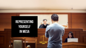 Representing Self Mesa Municipal Court